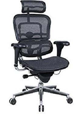 Ergohuman high back executive chair